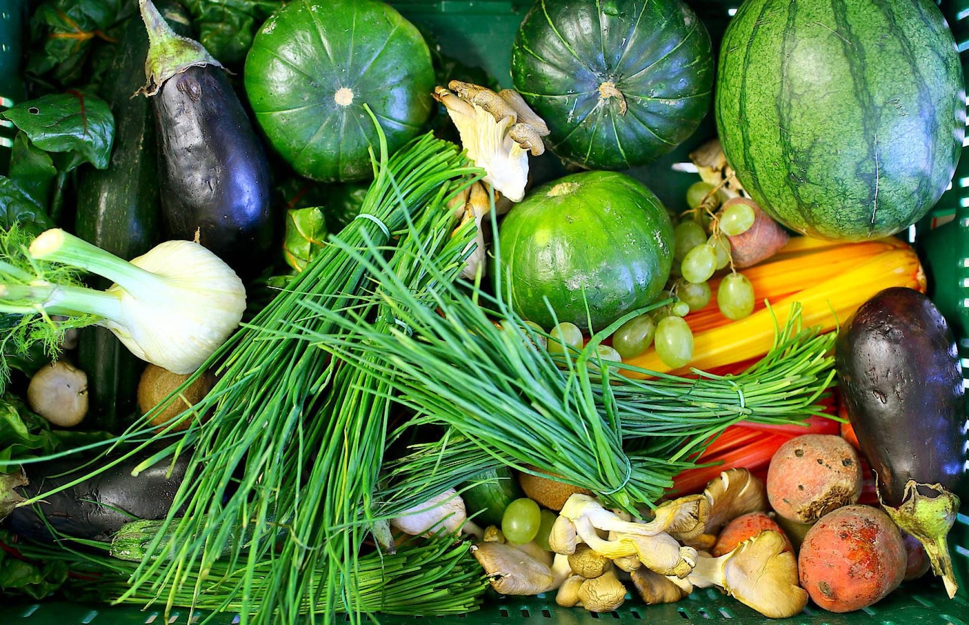 ab2cf3b9e096e4 Die Weltreise der Bio-Lebensmittel auf unserem Teller