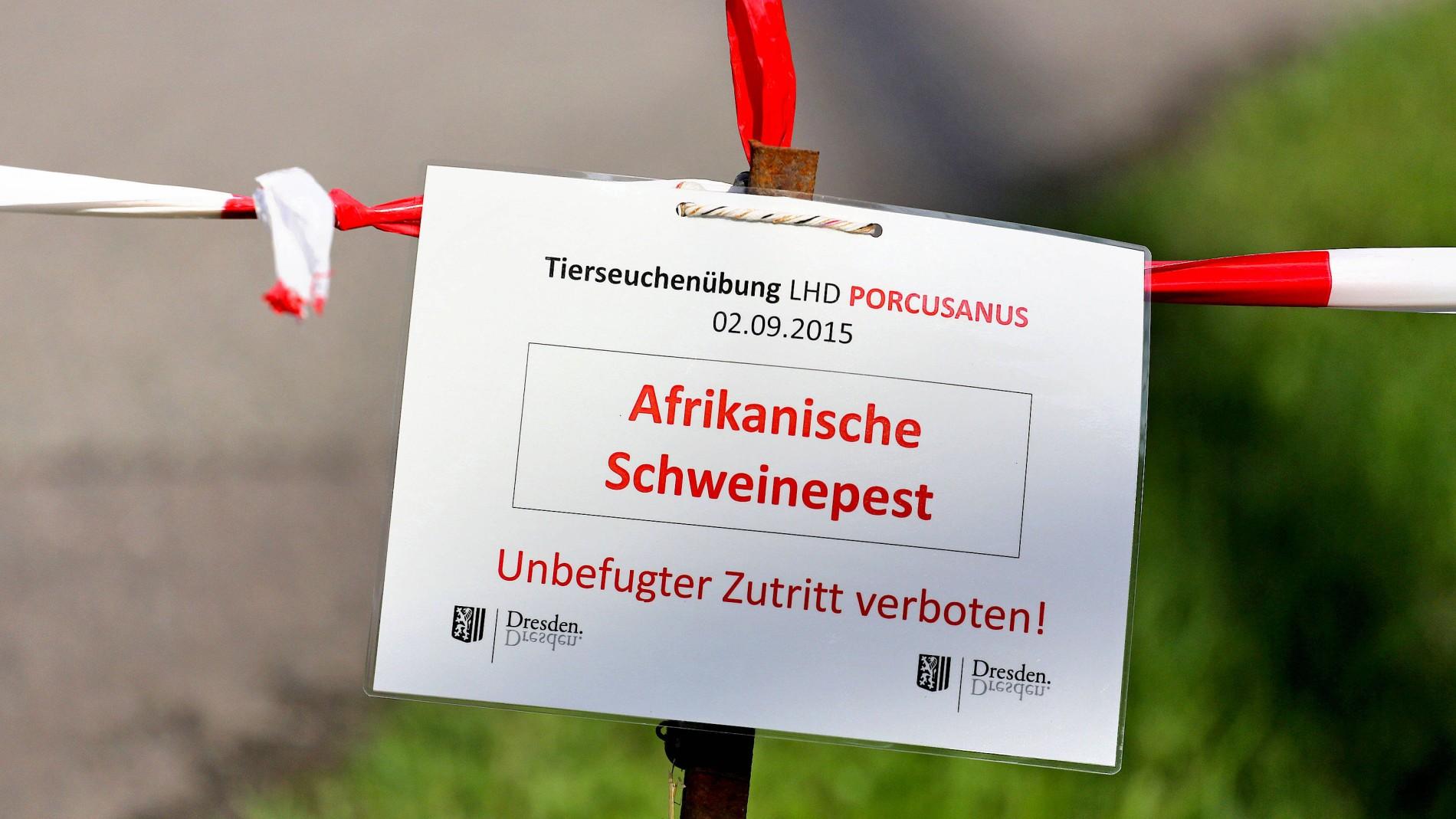 Danemark Baut Einen Zaun An Der Grenze Zu Deutschland