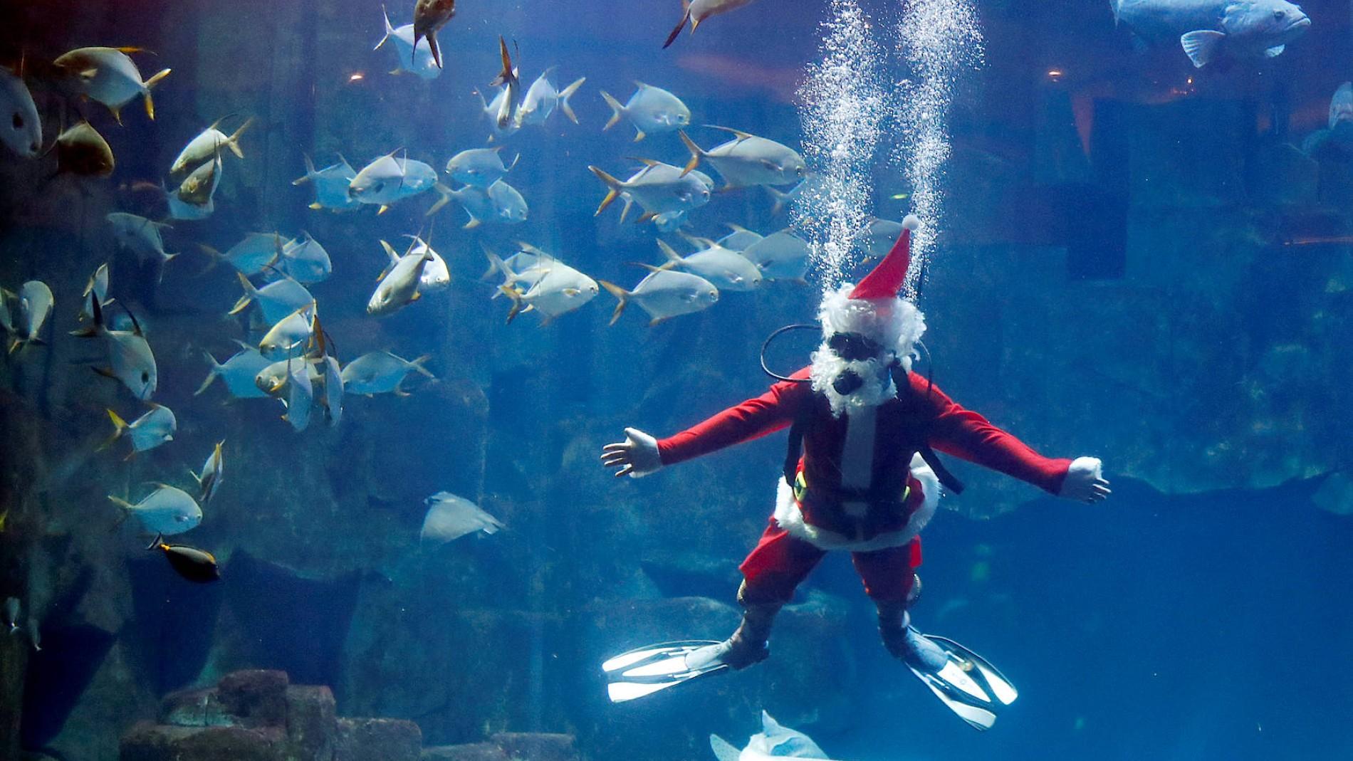 Wer Bringt Weihnachtsgeschenke In Spanien.Weihnachtsmann Unterwasser Blubb Blubb Blubb Statt Ho Ho Ho