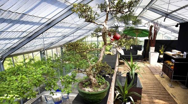 Leben in der Natur: Wohnen im Gewächshaus - Stil - FAZ